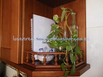 Conjunto de tarros de cristal y plantas