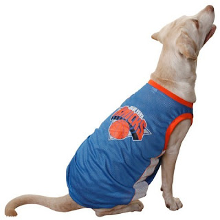 Basketball toys and jerseys for dogs