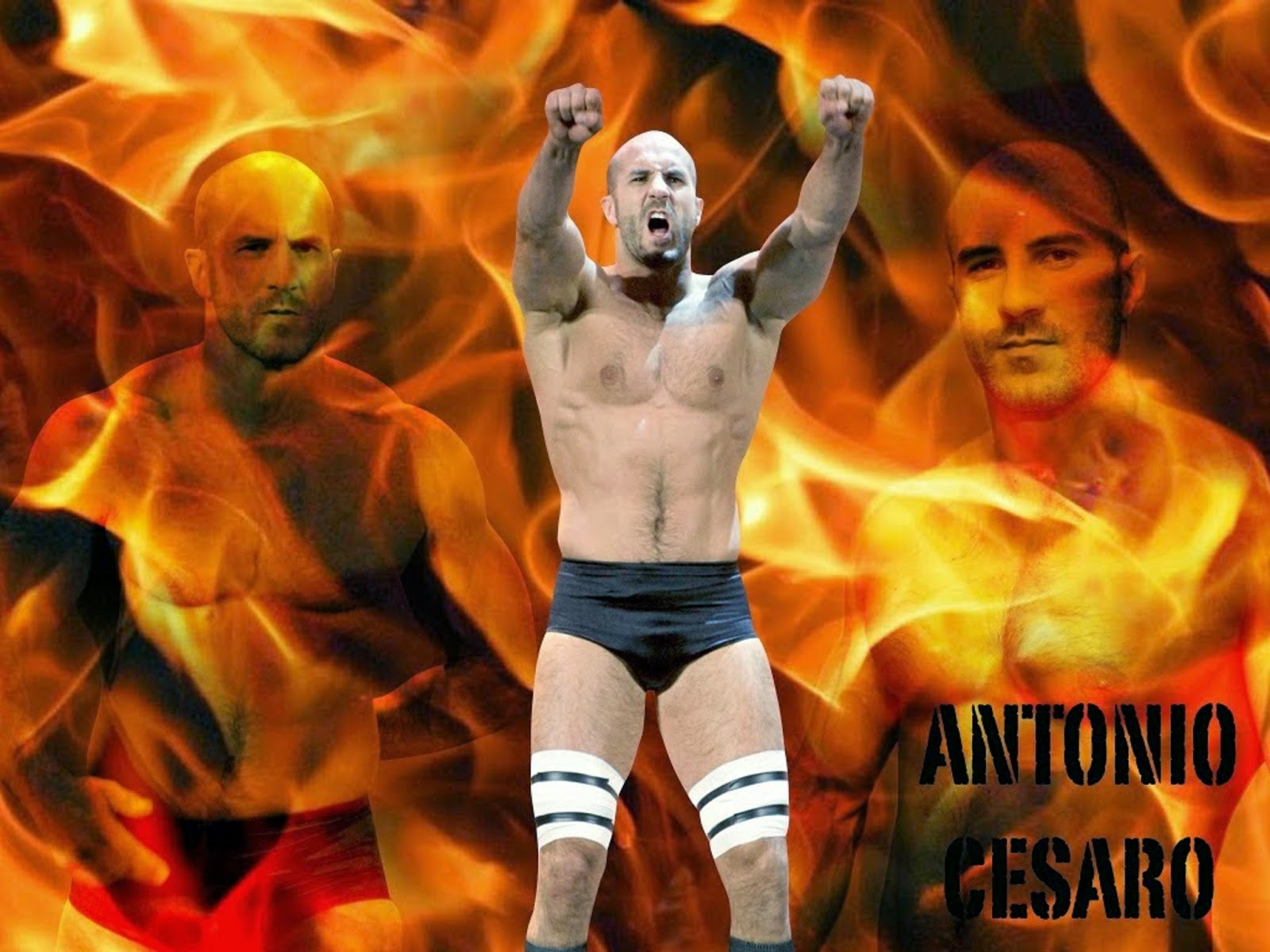 Antonio Cesaro Hd Free Wallpapers
