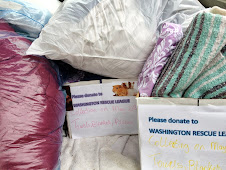 Newport Mill Middle School's Green Club & Student Government's Linen Drive -- SUCCESS!