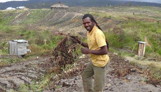 Hingga November, Embun Es Masih Melanda Lanny Jaya Papua