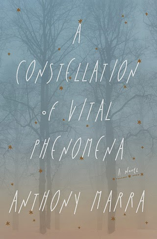 http://discover.halifaxpubliclibraries.ca/?q=title:%22a%20constellation%20of%20vital%20phenomena%22