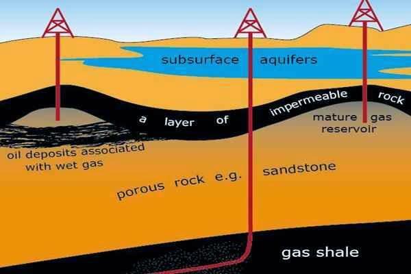 Seputar forex minyak
