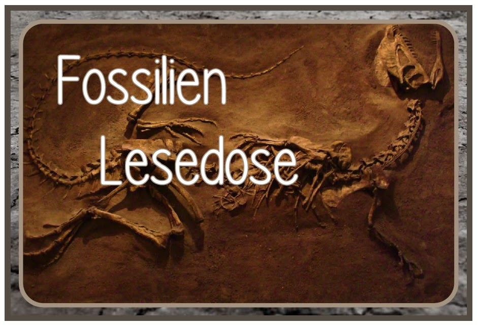 http://www.endlich1pause.blogspot.de/2014/07/neue-lesedosen.html