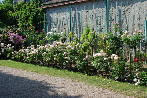 Rose Garden Landscaping Garden Stone Landscape With Rose Garden