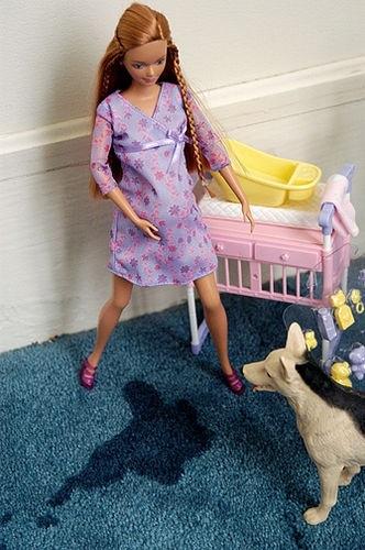 Labarbie ramasseuse de crotte - Barbie de noel 2012 ...