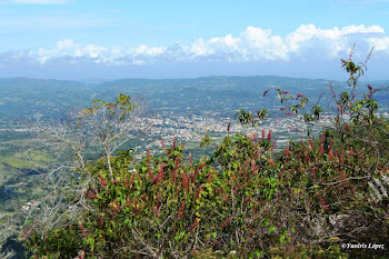 Jarabacoa, La Vega