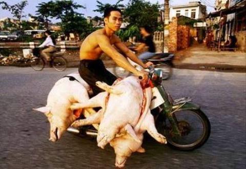 18 điều ngưỡng mộ về người Việt Nam