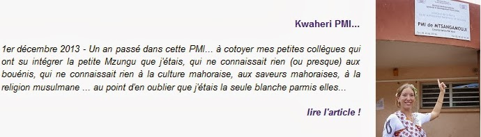 http://blogger-expatries-a-mayotte.blogspot.com/2013/12/kwaheri-pmi.html