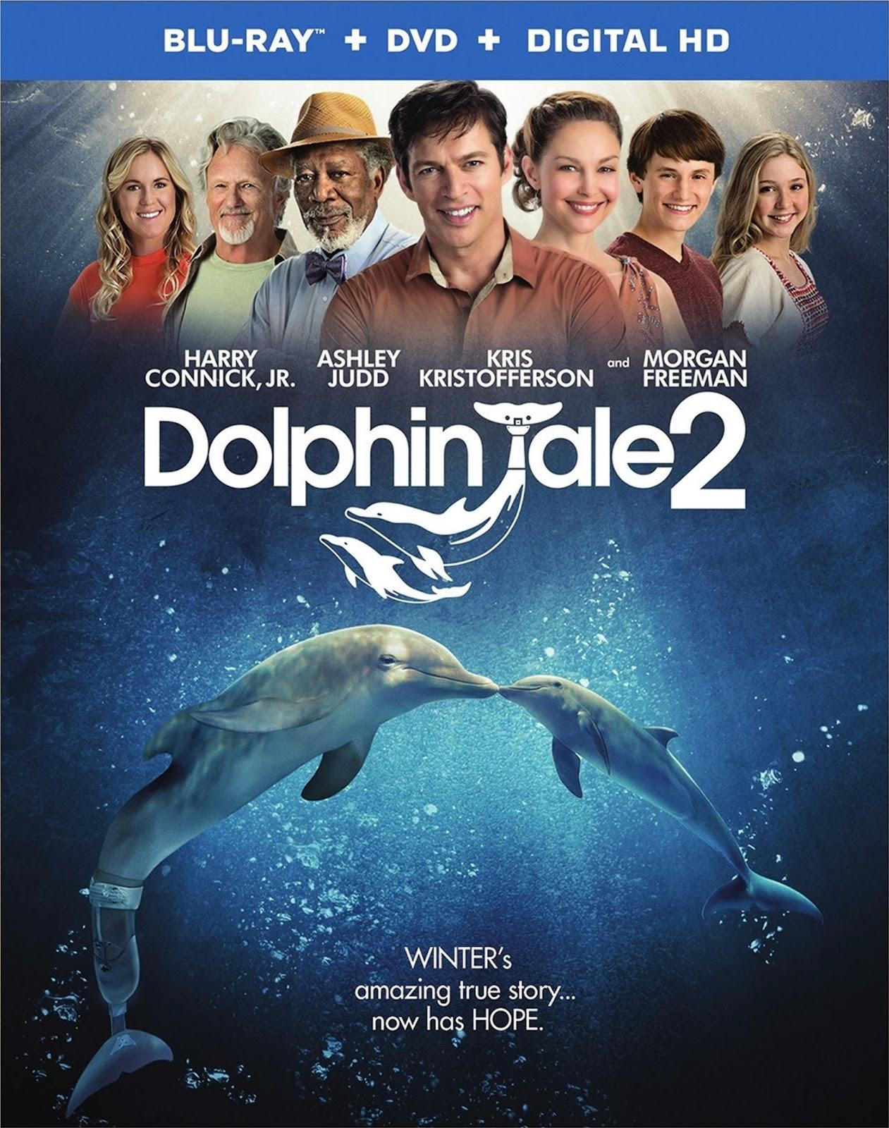Dolphin Tale 2 (2014) Brrip tainies online oipeirates
