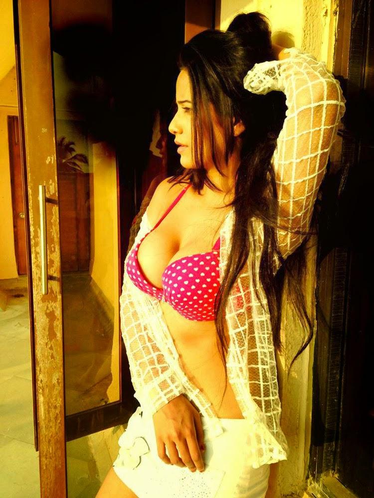 Poonam pandey latest photoshoot