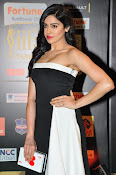 Adah Sharma latest photos at iifa day 2-thumbnail-17