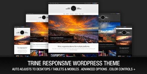 Beautiful Responsive WordPress Themes
