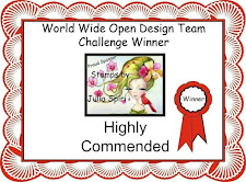 Highly Commended World Wide Design Team Challenge