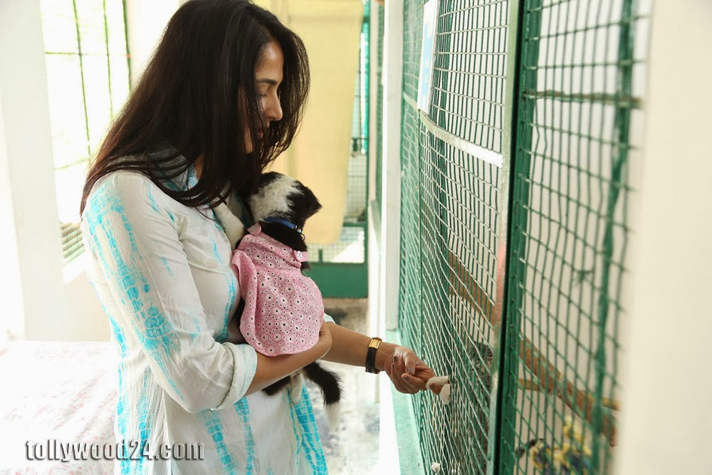 Anushka with Puppy at Blue Cross Pet Carnival Press meet-HQ-Photo-4