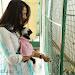 Anushka with Puppy at Blue Cross Pet Carnival Press meet-mini-thumb-4