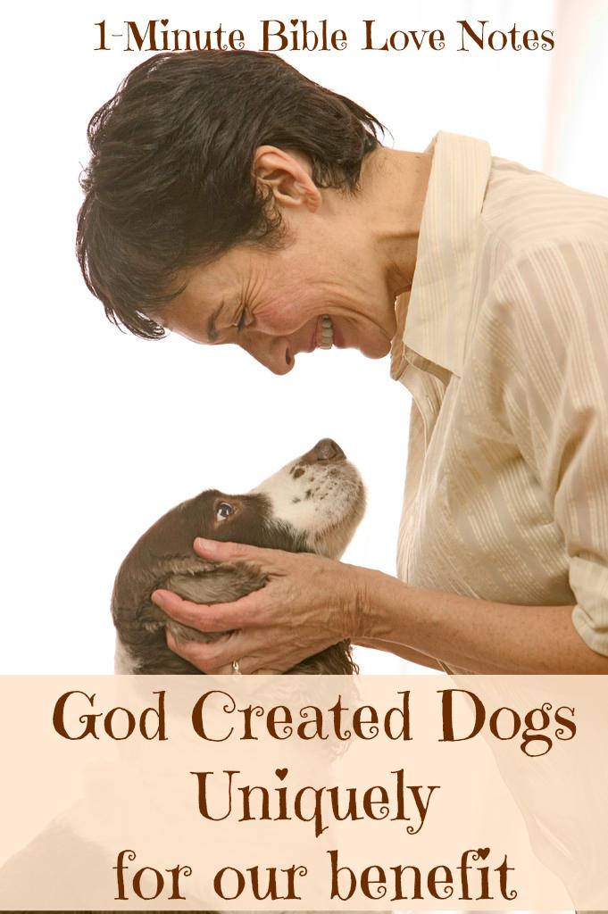 dog+love2.jpg