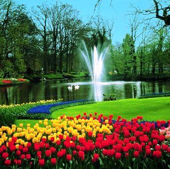 Mil mundos bellos los jardines de keukenhof for Jardines bellos fotos