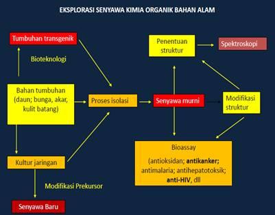 kimia bahan alam steroid