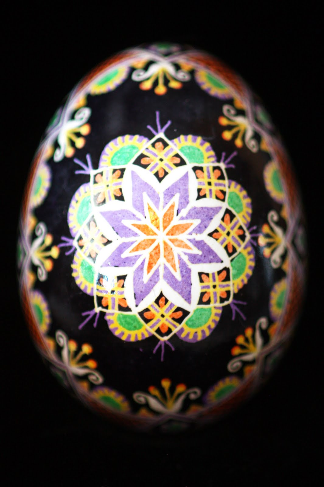 Traditional Rose Pysanka Batiked Egghshell in Purple, Orange and Yellow on Black Background