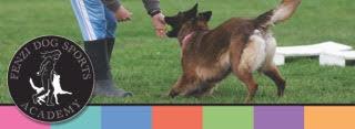 Fenzi Dog Sport Academy