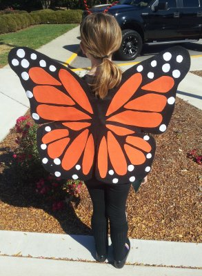 Halloween costumes for kids butterfly 1