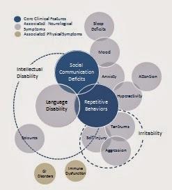 Autism Symptom Chart
