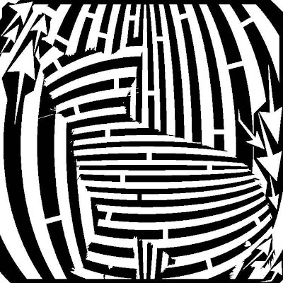 black and white cat maze