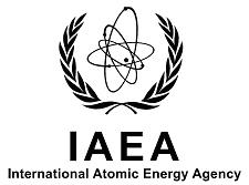 IAEA hacked
