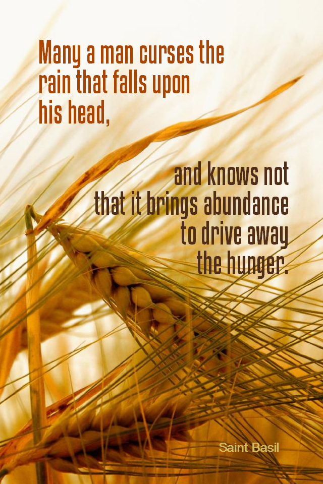 visual quote - image quotation for ABUNDANCE - Many a man curses the rain that falls upon his head, and knows not that it brings abundance to drive away the hunger. - Saint Basi