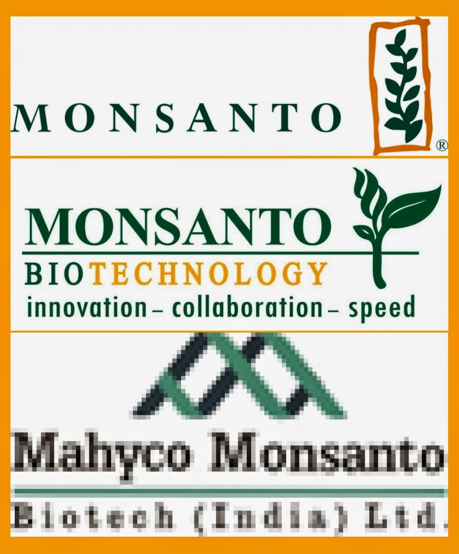 mansanto seed corp What do farmers agree to when they sign a monsanto contract we should only buy seed from a dealer or seed company licensed by monsanto.