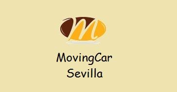 Alquiler vehículos con conductor