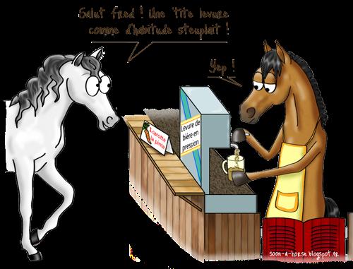 Soon a Horse, Véto Malin la pharmacie animale