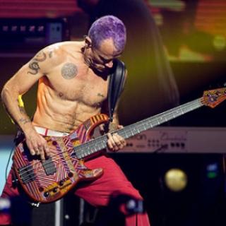 7 Bassist Terbaik Di Dunia