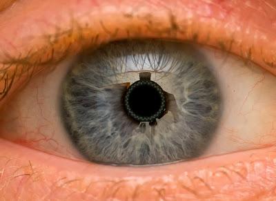 human eye photography