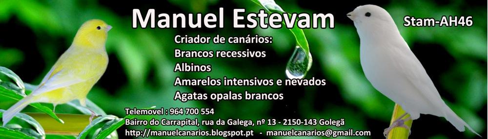 Manuel Estevam