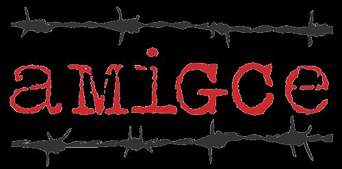 Associació pel Museu Internacional de la Guerra Civil Espanyola
