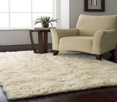 Comfortable Sofa with Rugs USA Collection