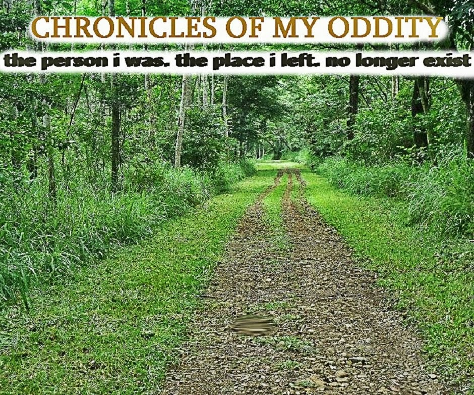 Chronicles of My Oddity