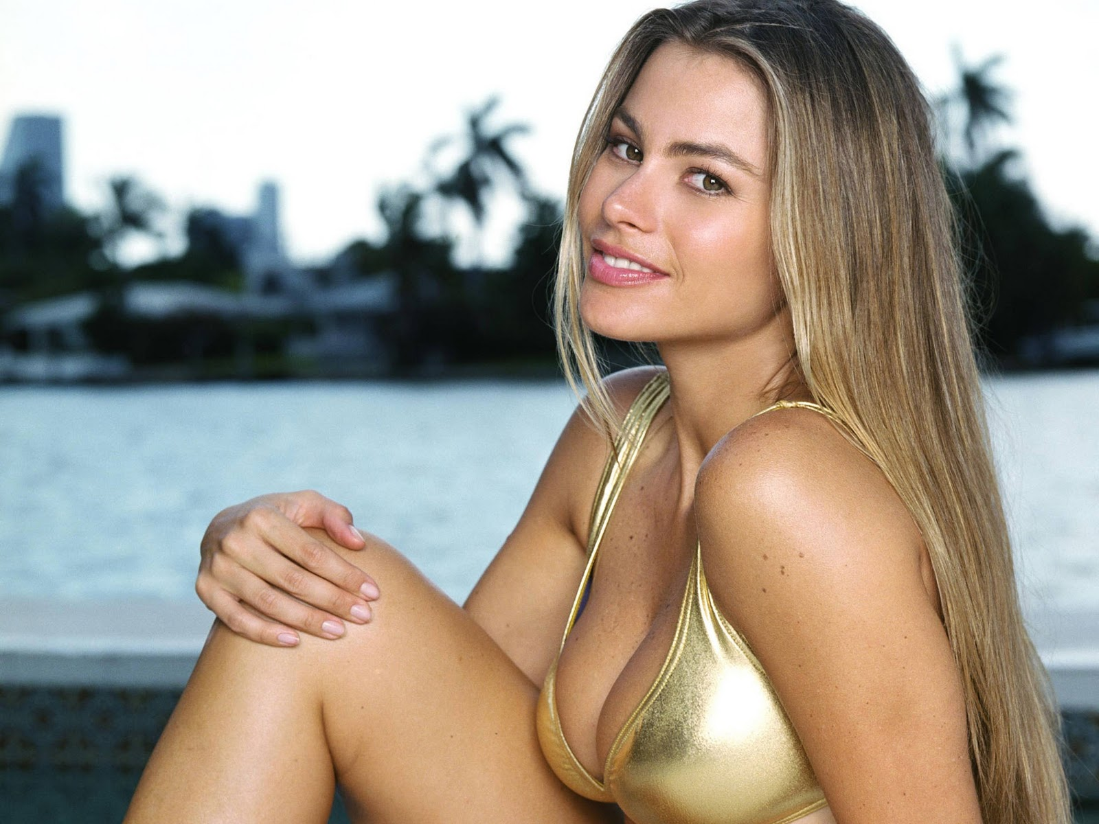Valuable Sofia vergara blonde right!