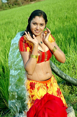 Actress Apsara Hot Wet Bathing Scene Photos