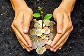Revenus provenant des exploitations agricoles