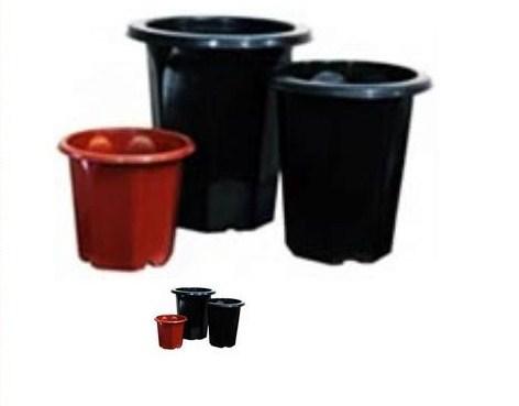 Vasos pl sticos especial orqu deas for Plantas decorativas de plastico