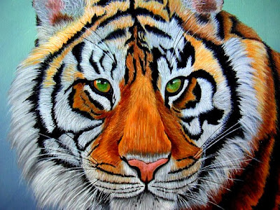 https://www.etsy.com/listing/119484448/tiger-painting-siberian-tiger-wildlife?ref=favs_view_4