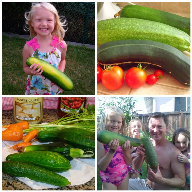 Clever, Crafty, Cookin\' Mama: Growing Zucchini in Small Spaces