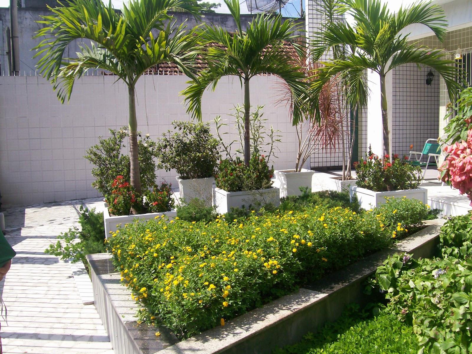 El Shaday Plantas e Jardins Palmeira Veith