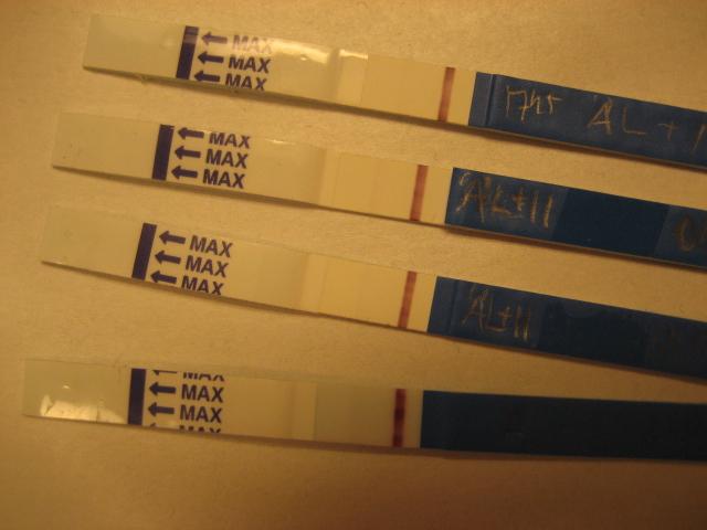 vita flytningar efter ägglossning