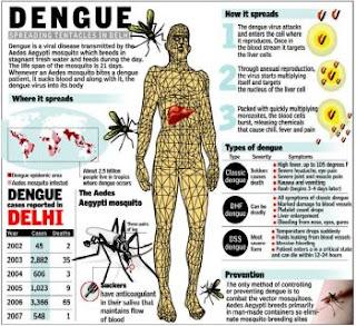 dengue+fever+wiki