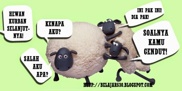 tips beli kambing kurban 2014