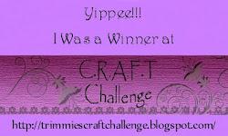 challenge 198